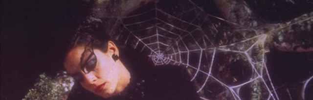 donna ragno